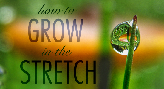 How to Grow in the Stretch