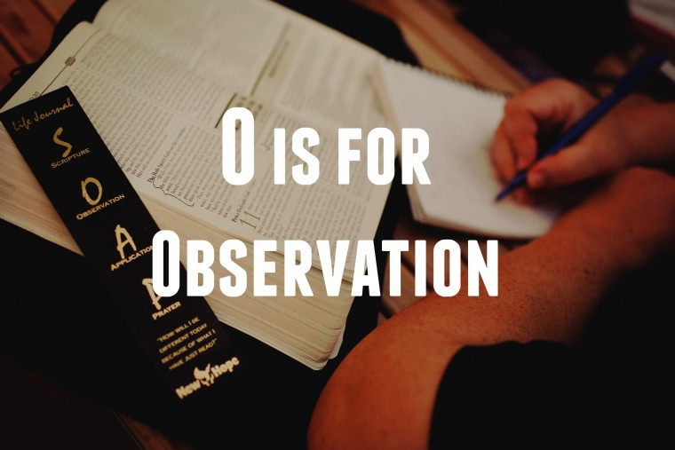 O is for Observation