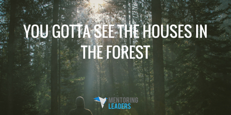 You Gotta See the Houses in the Forest - Mentoring Leaders