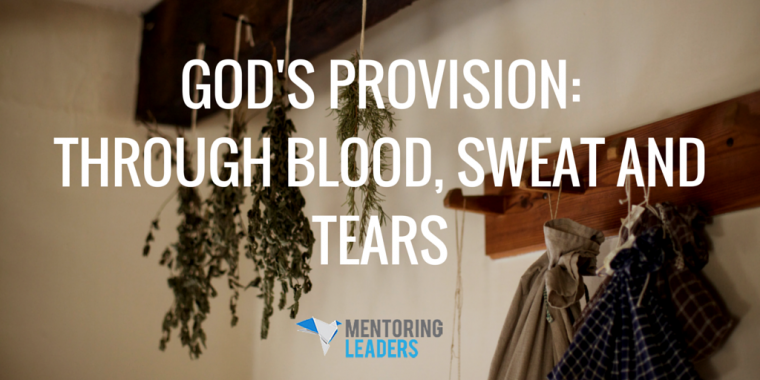 Mentoring Leaders - God's Provision